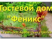 """Гостевой дом """"Феникс"""""""
